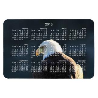 Lone Bald Eagle; 2013 Calendar Rectangular Photo Magnet