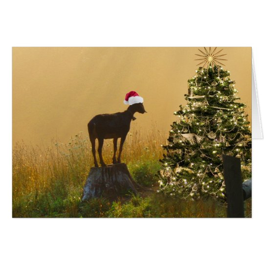 Lone Goat Marvels At Christmas Tree Card