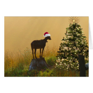 Lone Goat Marvels At Christmas Tree Greeting Card