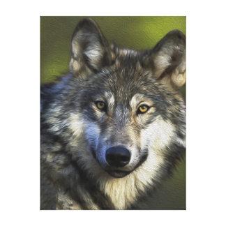 Lone Grey Wolf Canvas Print
