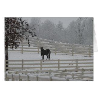 Lone Horse Note Card