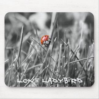 Lone ladybird mousemat