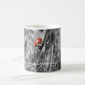 Lone ladybird mug