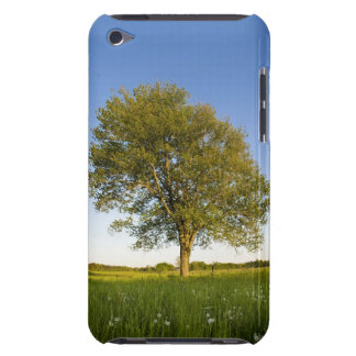 Lone maple tree in hay field at Raymond Farm, Barely There iPod Case