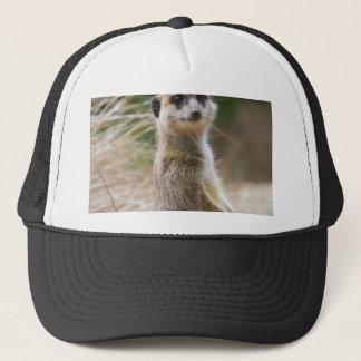 Lone Meerkat Trucker Hat