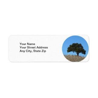 Lone Oak in Young Vineyard at Niner Estates Return Address Label