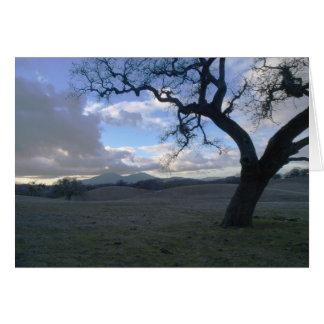Lone Oak overlooking Mt. Diablo in Winter Cards
