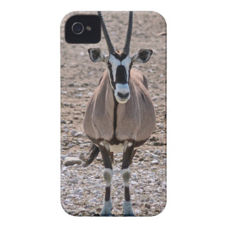 Lone oryx iPhone 4 cover