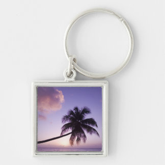 Lone palm tree at sunset, Coconut Grove beach Key Ring