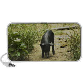 Lone Pig (2) Portable Speakers
