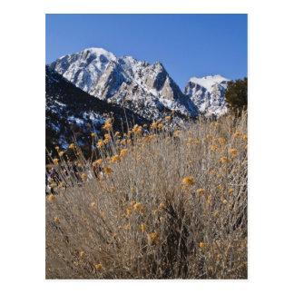 Lone Pine, California Postcards