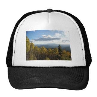 Lone Pine.jpg Cap