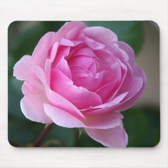 Lone Pink Rose Mousepad