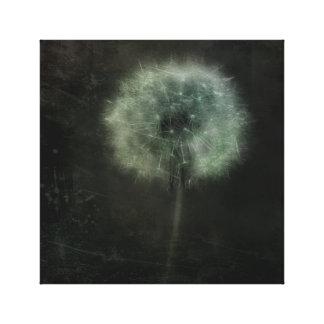 Lone Pretty Dandelion Canvas Print