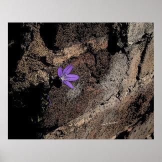 Lone Purple Flower  Posters