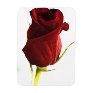 Lone Rose  Premium Magnet Vinyl Magnet