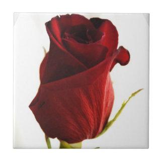 Lone Rose  Tile