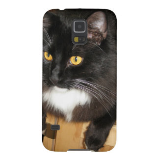 Lone Star Cat Perching on a Table, photograph Galaxy S5 Cover