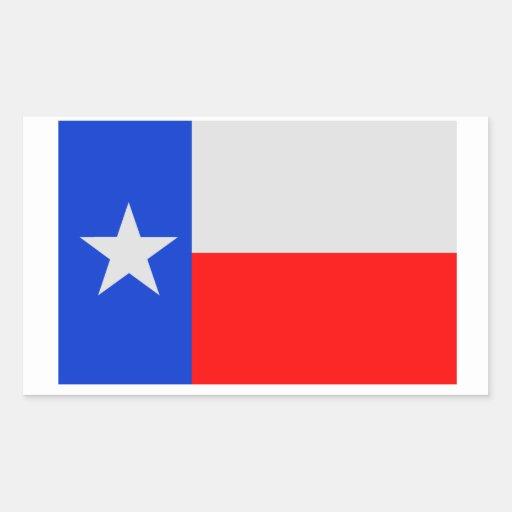 Lone Star Texas Flag Sticker