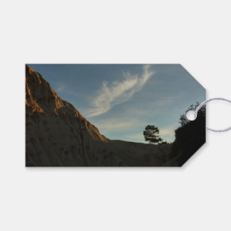 Lone Torrey Pine California Sunset Landscape Gift Tags