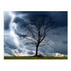 Lone tree and lightning postcard