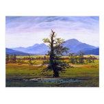 Lone Tree - by Caspar David Friedrich Post Card