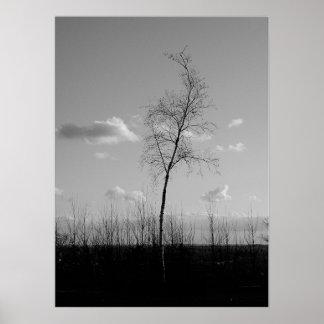 Lone Tree Hill Print