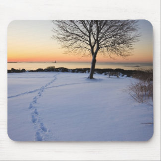 Lone tree in fresh snow at New Castle Common Mouse Mat