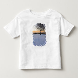 Lone tree in fresh snow at New Castle Common Toddler T-Shirt