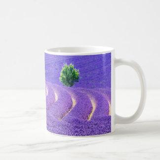 Lone tree in Lavender Field, France Coffee Mug