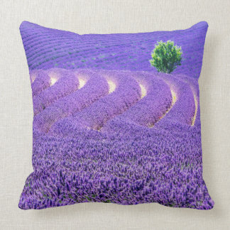 Lone tree in Lavender Field, France Cushion
