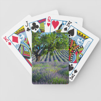 Lone tree in purple field of lavender bicycle playing cards