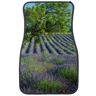 Lone tree in purple field of lavender car mat