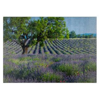 Lone tree in purple field of lavender cutting board