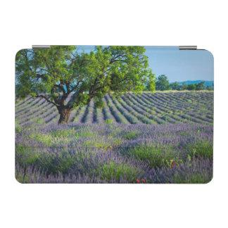 Lone tree in purple field of lavender iPad mini cover