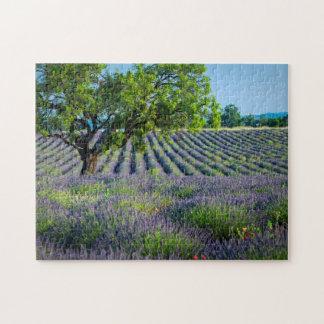 Lone tree in purple field of lavender jigsaw puzzle