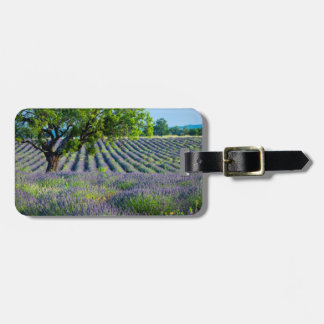 Lone tree in purple field of lavender luggage tag