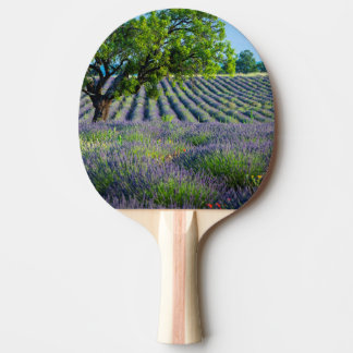 Lone tree in purple field of lavender ping pong paddle