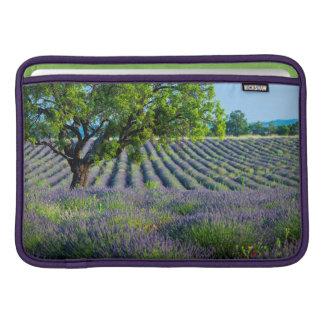 Lone tree in purple field of lavender sleeve for MacBook air
