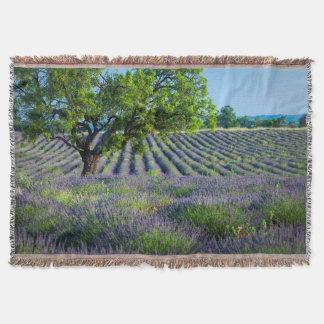 Lone tree in purple field of lavender throw blanket