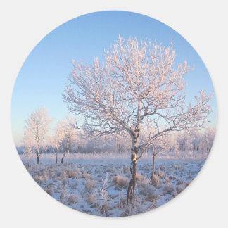 Lone Tree Light Frost Classic Round Sticker