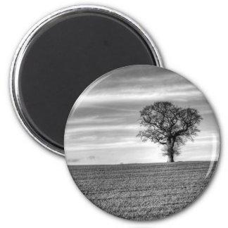Lone Tree Magnet