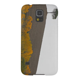 Lone tree on a hillside cases for galaxy s5