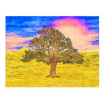 LONE TREE POST CARD