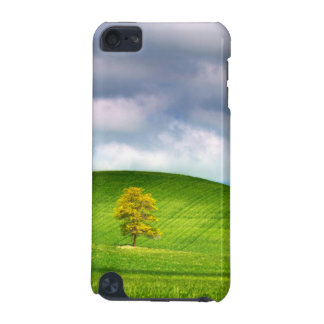 Lone tree surrounded by rolling hills of wheat iPod touch (5th generation) cover