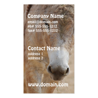 Lonely Donkey Business Cards