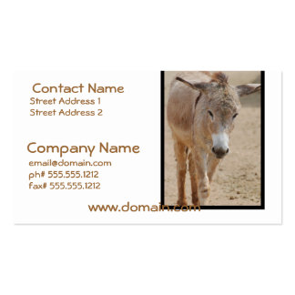 Lonely Donkey Pack Of Standard Business Cards