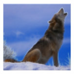 Lonely Howling Endangered Grey Wolf Poster