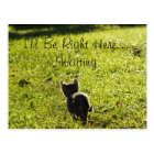 """Lonely Kitten """"Missing You"""" Postcard"""
