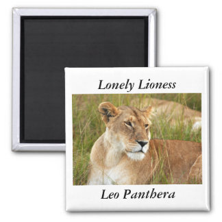 Lonely Lioness magnet